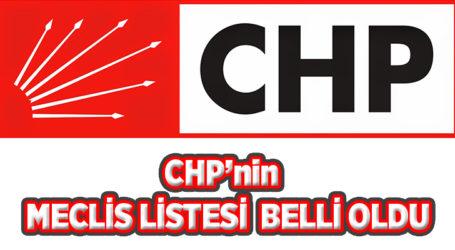CHP'nin Meclis Listesi Belli Oldu