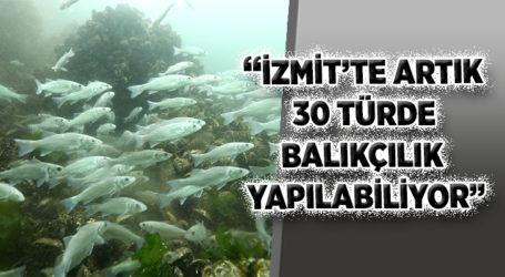 """""""İZMİT'TE ARTIK 30 TÜRDE BALIKÇILIK YAPILABİLİYOR"""""""