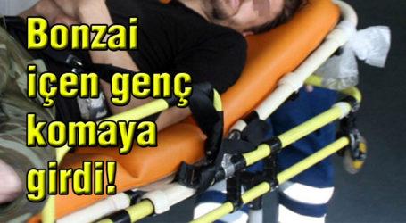 Bonzai içen genç komaya girdi!