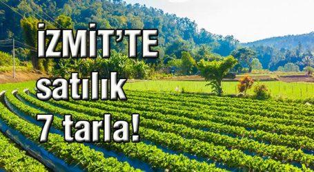 İZMİT'TE satılık 7 tarla!