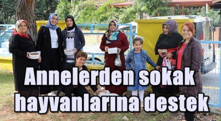 Annelerden sokak hayvanlarına destek