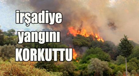 irşadiye yangını KORKUTTU