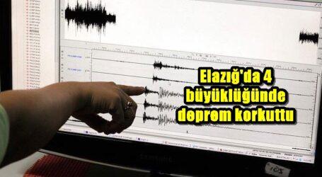 Elazığ'da 4 büyüklüğünde deprem korkuttu