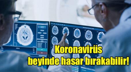 Koronavirüs beyinde hasar bırakabilir