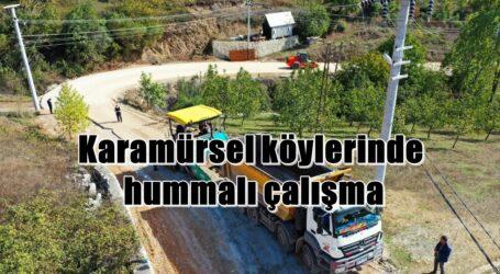 Karamürsel köylerinde hummalı çalışma